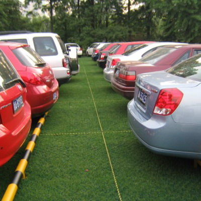 Lawn Grid Plastic Grass Pavers Manufacturer From China
