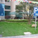 parking_lot06