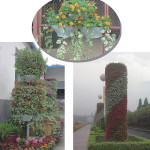 vertical_plant_container_project_pic_03
