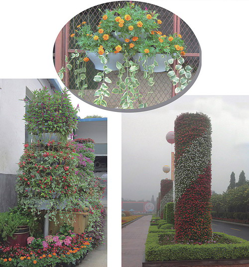 Wall Green Vertical Greening Plant Container Manufacturer