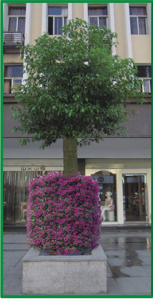 vertical_plant_container_project_pic_06
