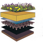 Roof Greening Installation Methods