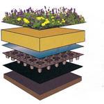 Metodi di installazione di Roof Greening
