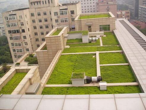 천주 Leiyuan 제안 독특한 녹색 지붕 디자인