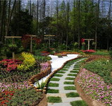 2013 Autumn Flower Show in Shanghai