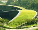 屋顶绿化常见问题