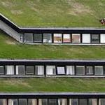 تزيين السقف الخاص بك إلى الحديقة الخضراء