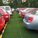 Magischer Parkplatz, um grün, stark und haltbar zu sein