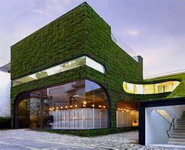 Roof Greening Plays an Important Roal in Environmental Protetction