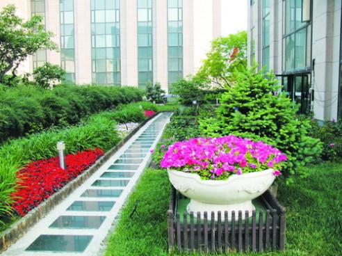 Residentiële groendaksystemen