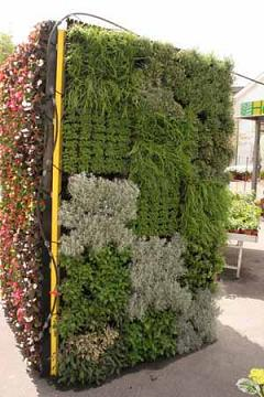 Leiyuan Greening Solution - Un fornitore leader di pareti verticali verticali.
