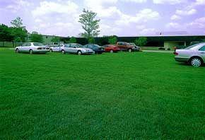 Varför är gräsbeläggning viktigt?