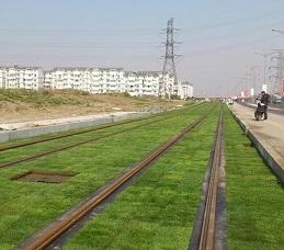 Plastikgrasraster von Leiyuan erlaubt leichten bis schweren Fahrzeugverkehr