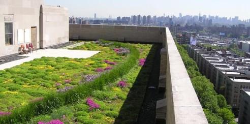 Come risolvere il riscaldamento globale di Greening Solutions?