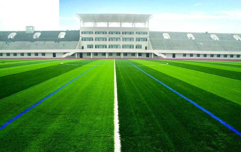 Backyard Turf Soccer Field : SoccerFieldArtificialGrassFootballTurf??