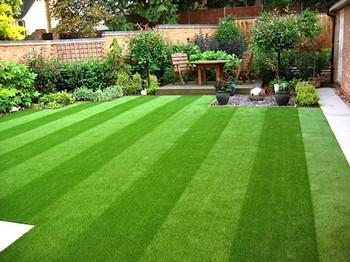 Warum Kunstrasen hat mehr Vorteile als natürliches Gras?