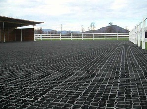 Why Choose Plastic Paddock Grids from Leiyuan?