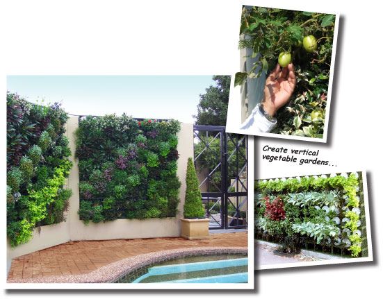 Benefits of Vertical Greening Systems