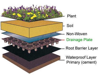 Introduzione sulla piastra di drenaggio e applicazione
