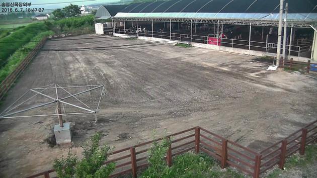 Basic Level Construction (2)