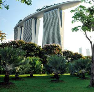 greening-construction-project