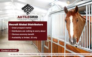 paddock-grids-recruit-global-distributors