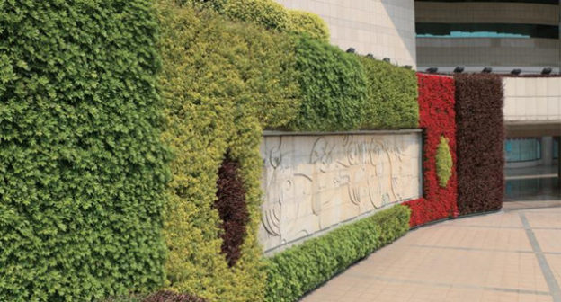 Application of Leiyuan Vertical Greening Plant Containers