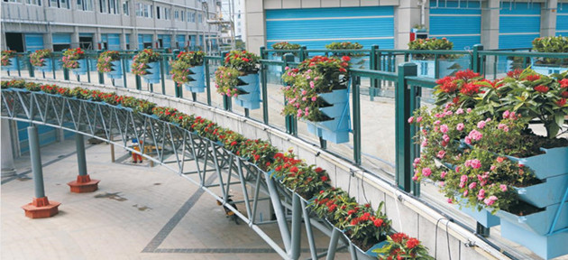 vertical-greening-plant-containers-application-3