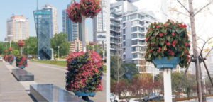vertical-greening-plant-containers-application-4