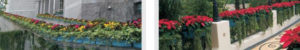 vertical-greening-plant-containers-application-5