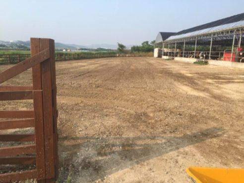هل معركة مع إدارة الطين على مزرعة الحصان الخاص بك؟
