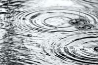 Как отличить задержку и удержание ливневых вод