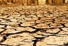 Waterlogging verursacht durch die Zerstörung des Ökosystems