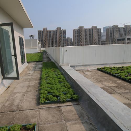 Rooftop Plant Tray Project -- Xiamen Xiangan Xiandian Primary School