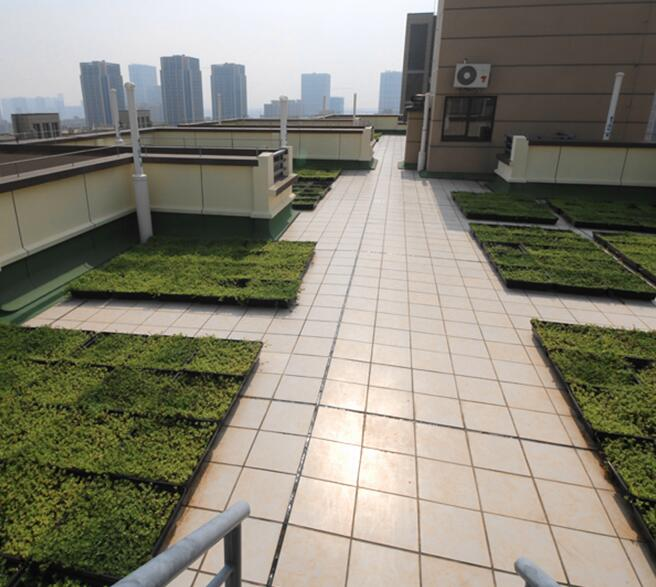 Green roof modular system can renovate old building green roof easil