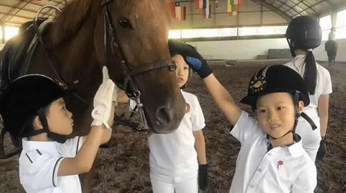 There are so many horse riding benefits, this summer take your child to learn equestrian!