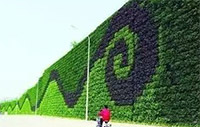Six Methods of Wall Greening