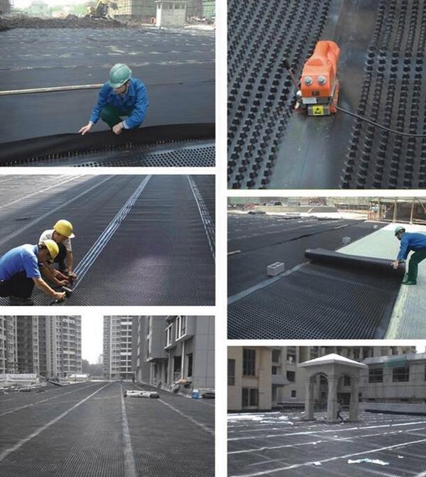 De gelijkenis en het verschil tussen drainagebord en drainageblad