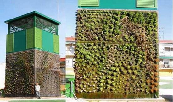 Dreidimensionale Begrünung der Landschaftsgestaltung