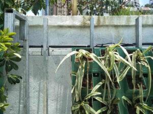 새로운 벽 녹색 재배자 GF50156