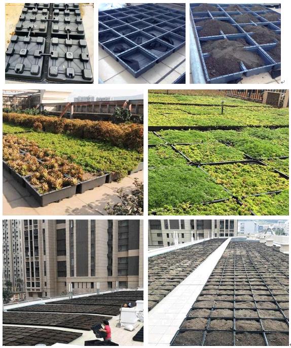 Proces instalacji modułu do sadzenia dachu
