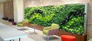 왜 식물 벽이 그렇게 인기가 있습니까?