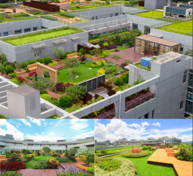 "LEIYUAN Technology promotes China's ""green hospital"" construction"
