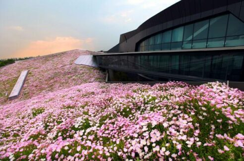 The largest green roof building in China