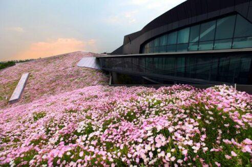 중국에서 가장 큰 녹색 지붕 건물