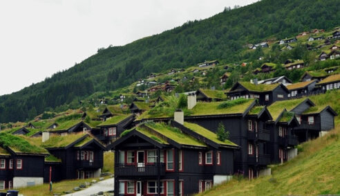 Beautiful green roofs in Norway