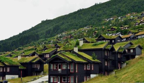 Piękne zielone dachy w Norwegii