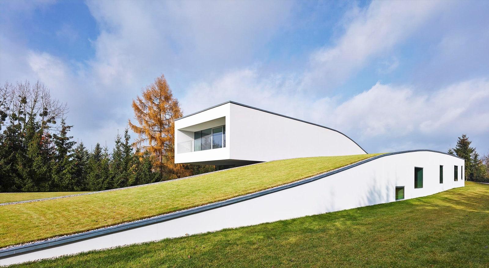 Espectaculares techos verdes alrededor del mundo