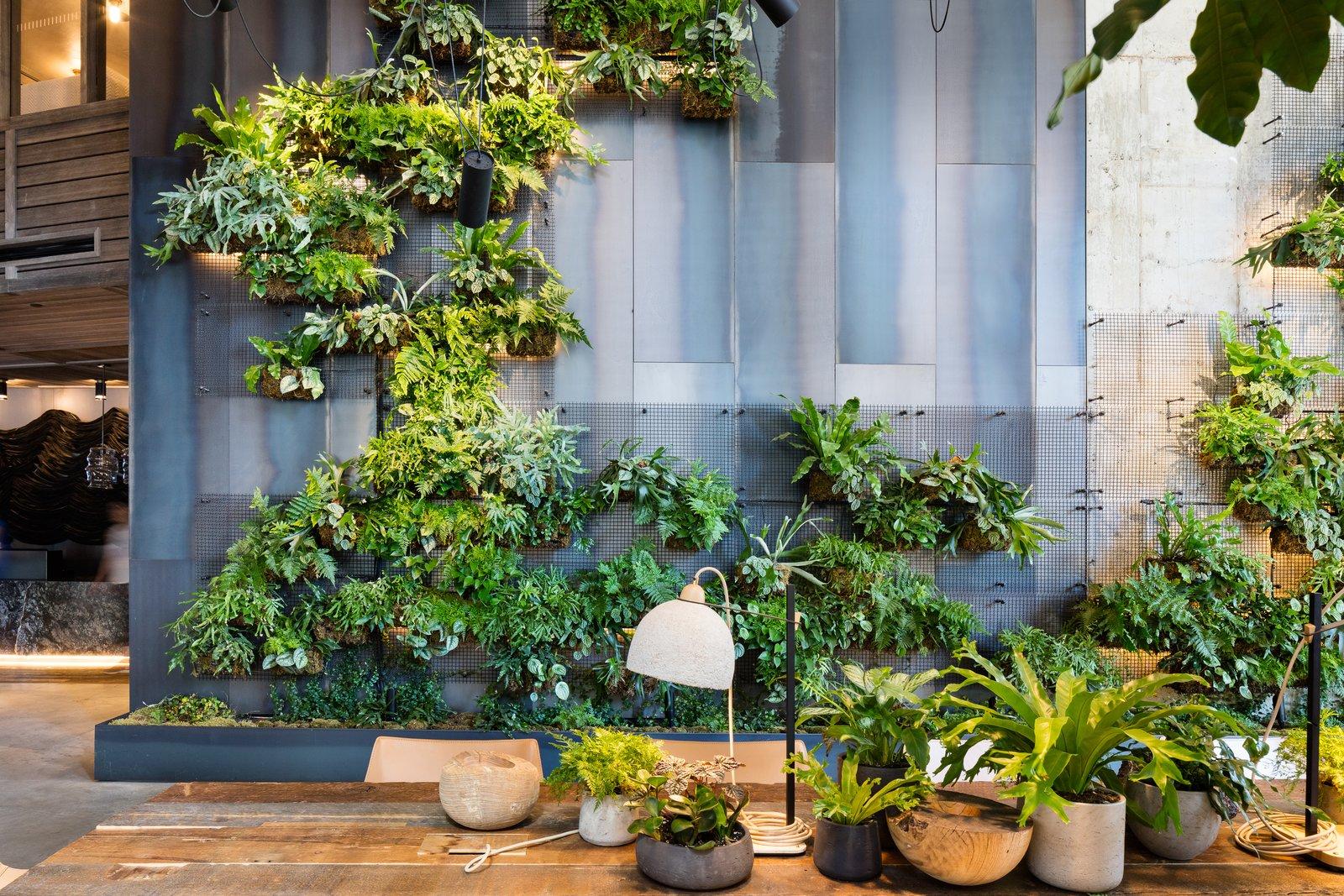 Mur de vie vertical dans l'hôtel Brooklyn Bridge