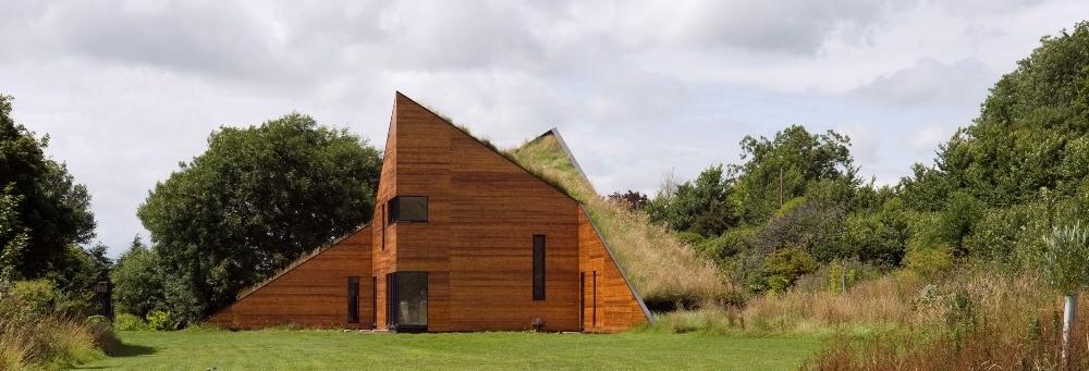 屋上緑化の例-マンネングサと多肉植物の芝生